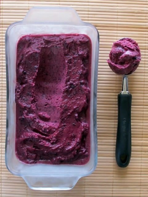 blueberry-frozen yogurt