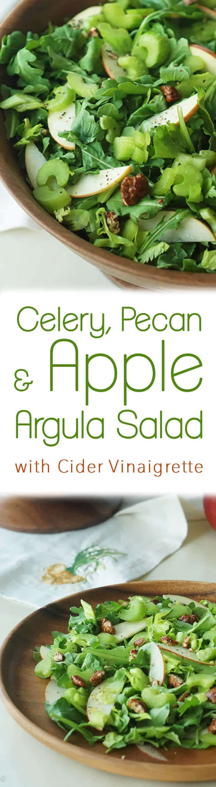 This Apple Arugula Salad is a perfect balance of flavours and textures with the mild crunchy celery, the sweet acidic apples, the peppery arugula and sweet pecans.