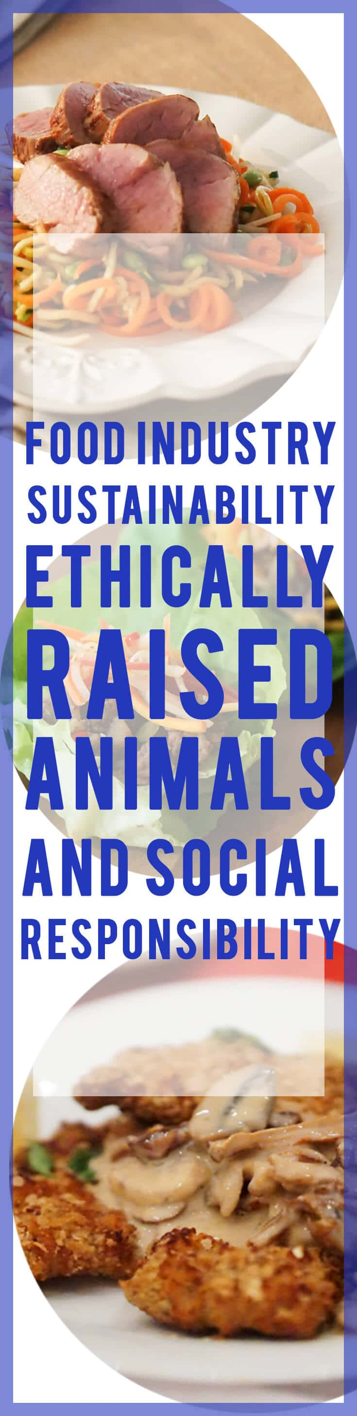 Food Industry Sustainability, Ethically Raised Animals and Social Responsibility