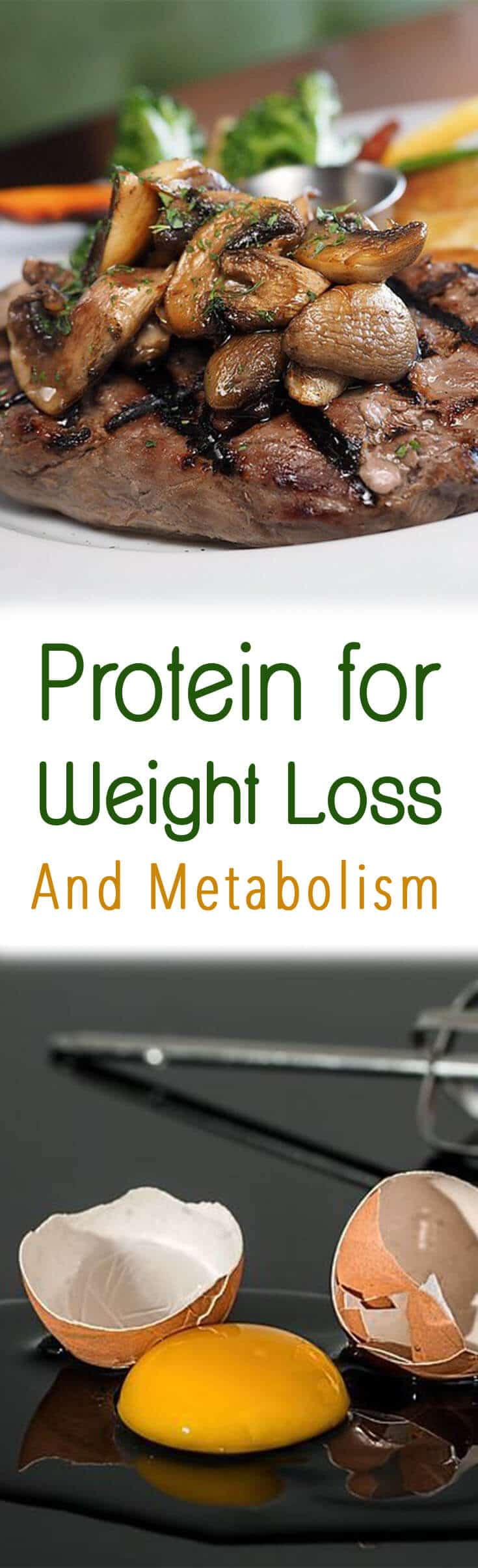 I dig into the research to discover the the power of protein for weight loss!