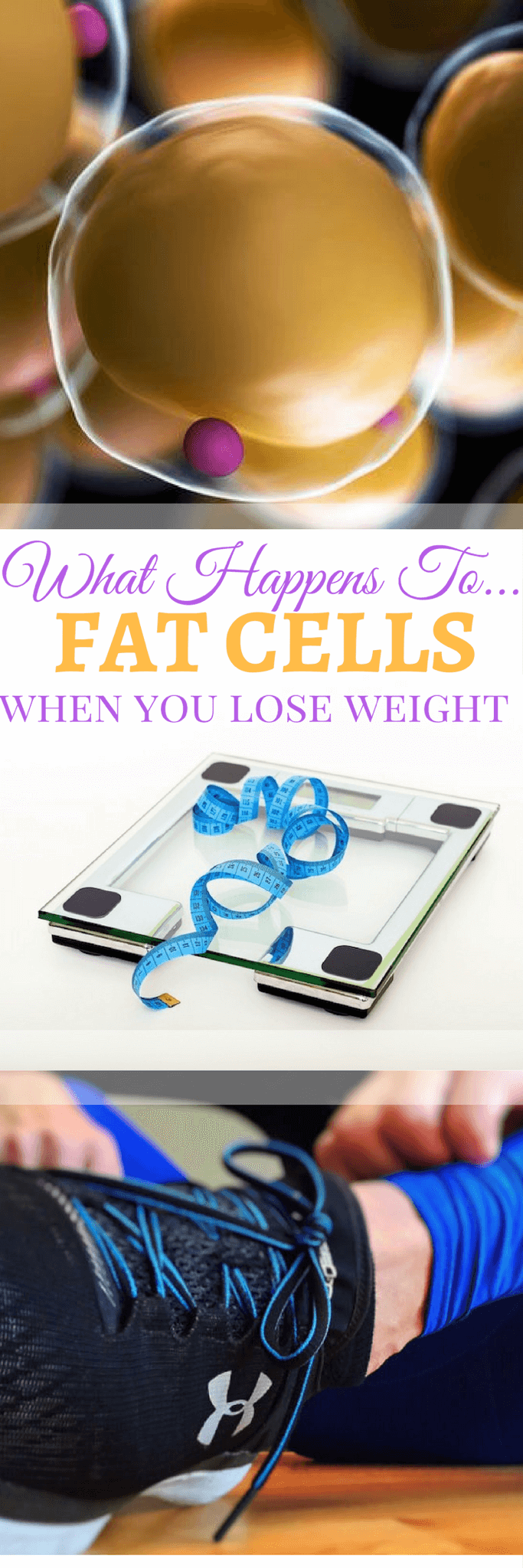 """A pinterest image of fat cells, scales, and running shoes with the text overlay \""""What Happens To Fat Cells When You Lose Weight.\"""""""