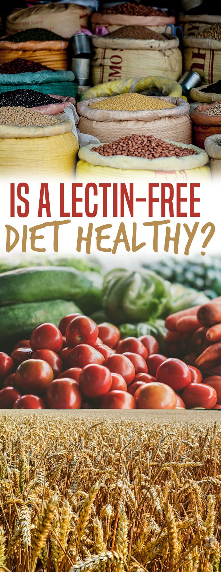 Let's find out whether a lectin-free diet is the new gluten-free diet, and more importantly, does it live up to its lengthy claims?