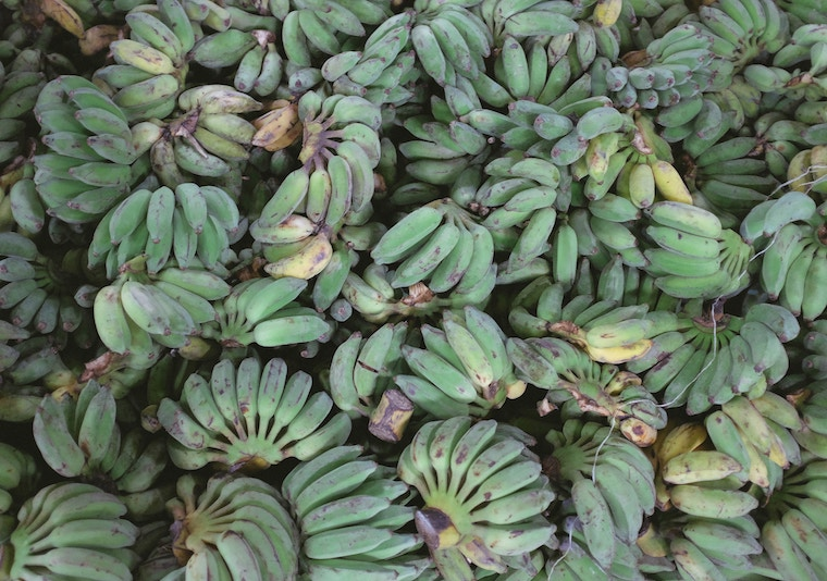 A bunch of green bananas.