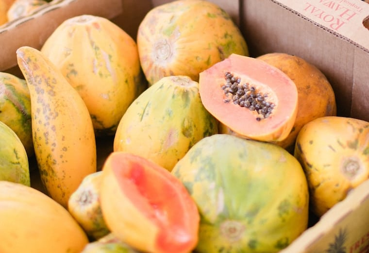 A bunch of papayas in a cardboard box.