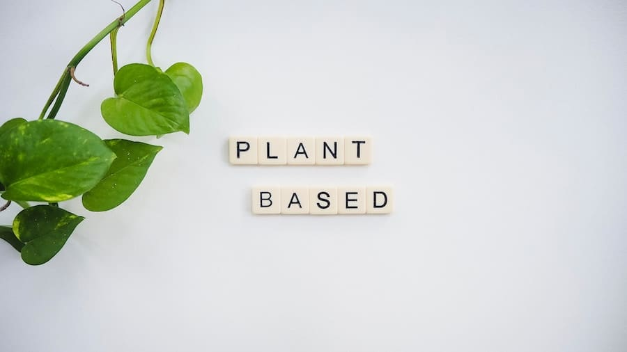 The words plant based on a white background.