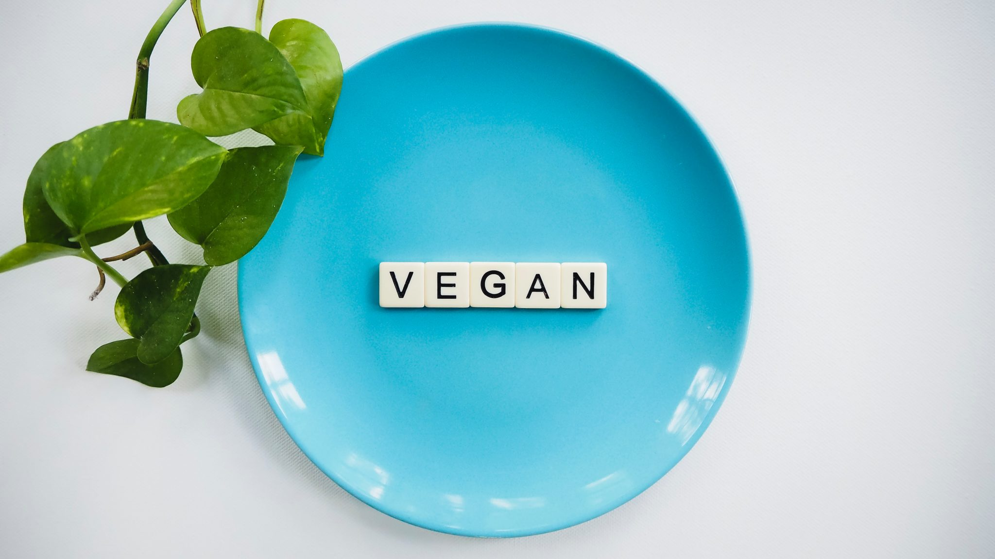 """image of a blue plate with tiles on top that read """"vegan"""" against a white background"""