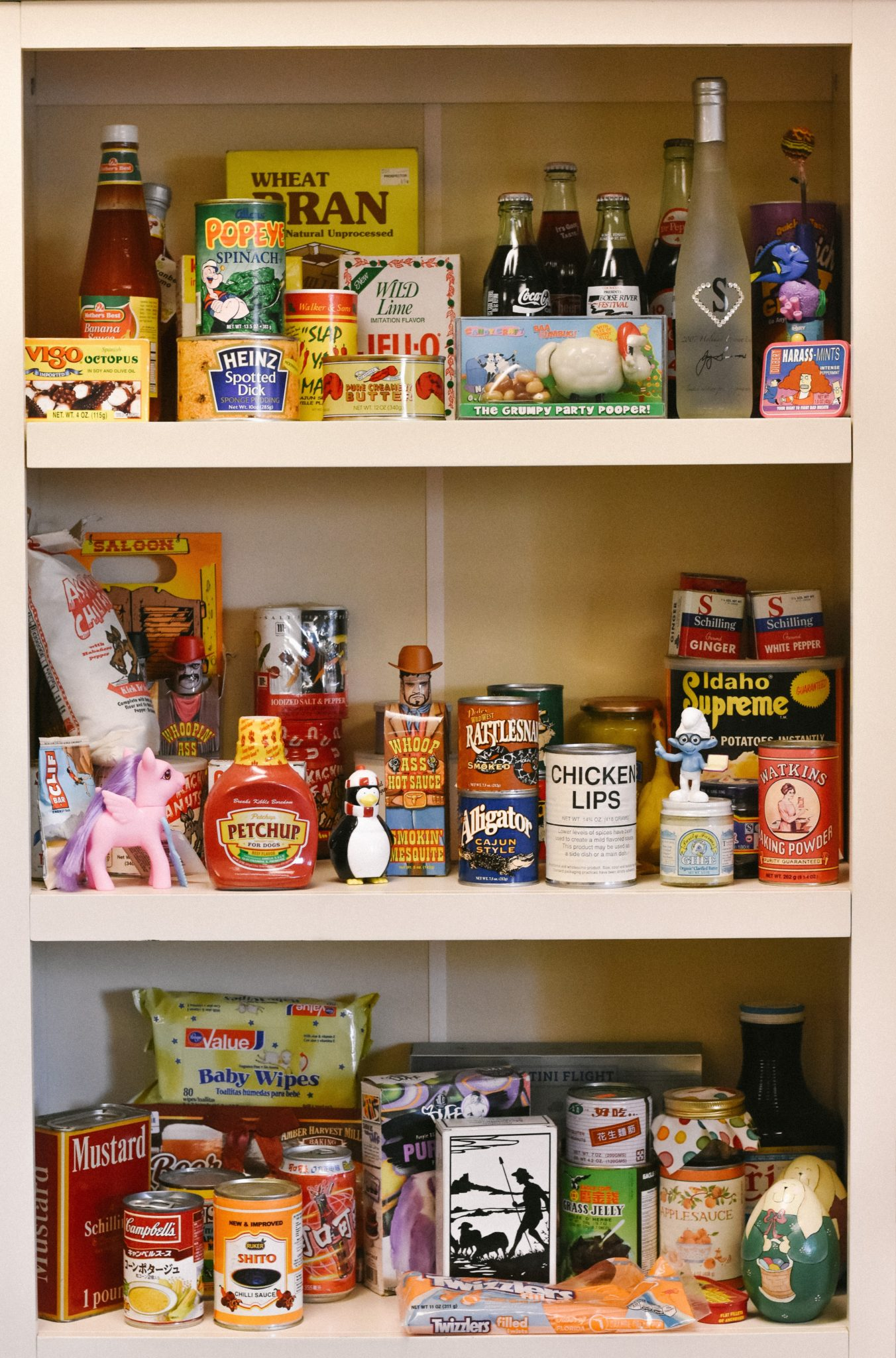 a stocked pantry representing a trigger for eating emotionally when stressed