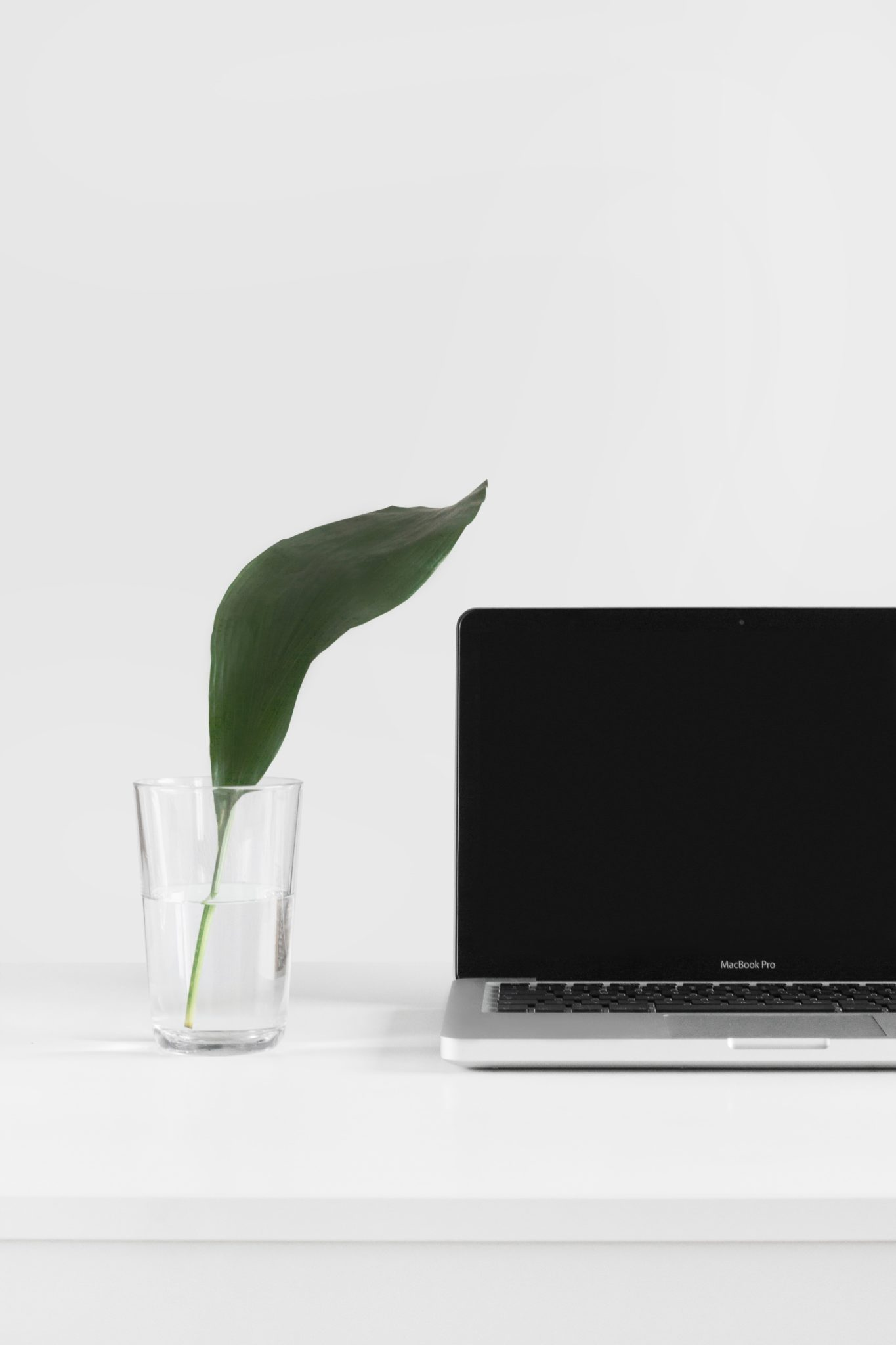 image of a clear glass filled with water and a green leaf next to a laptop on a white desk