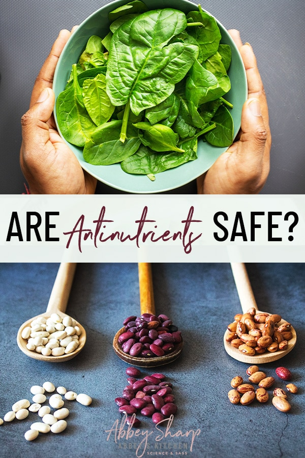 "pinterest image of of beans and spinach with a text overlay that says ""are antinutrients safe?"""