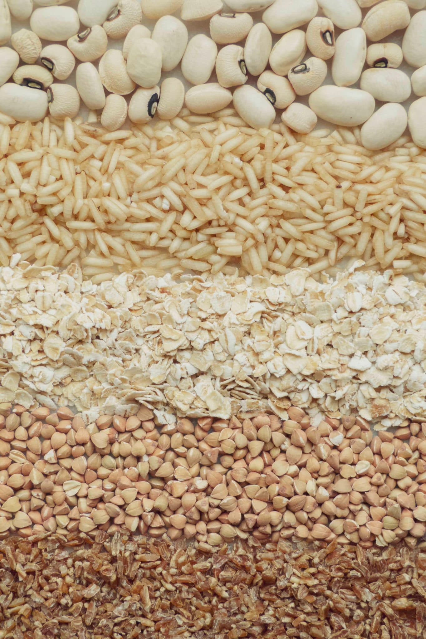 a variety of different grains with antinutrients like beans, rice, oats, buckwheat and farrow laid in a layer to create a colour gradient