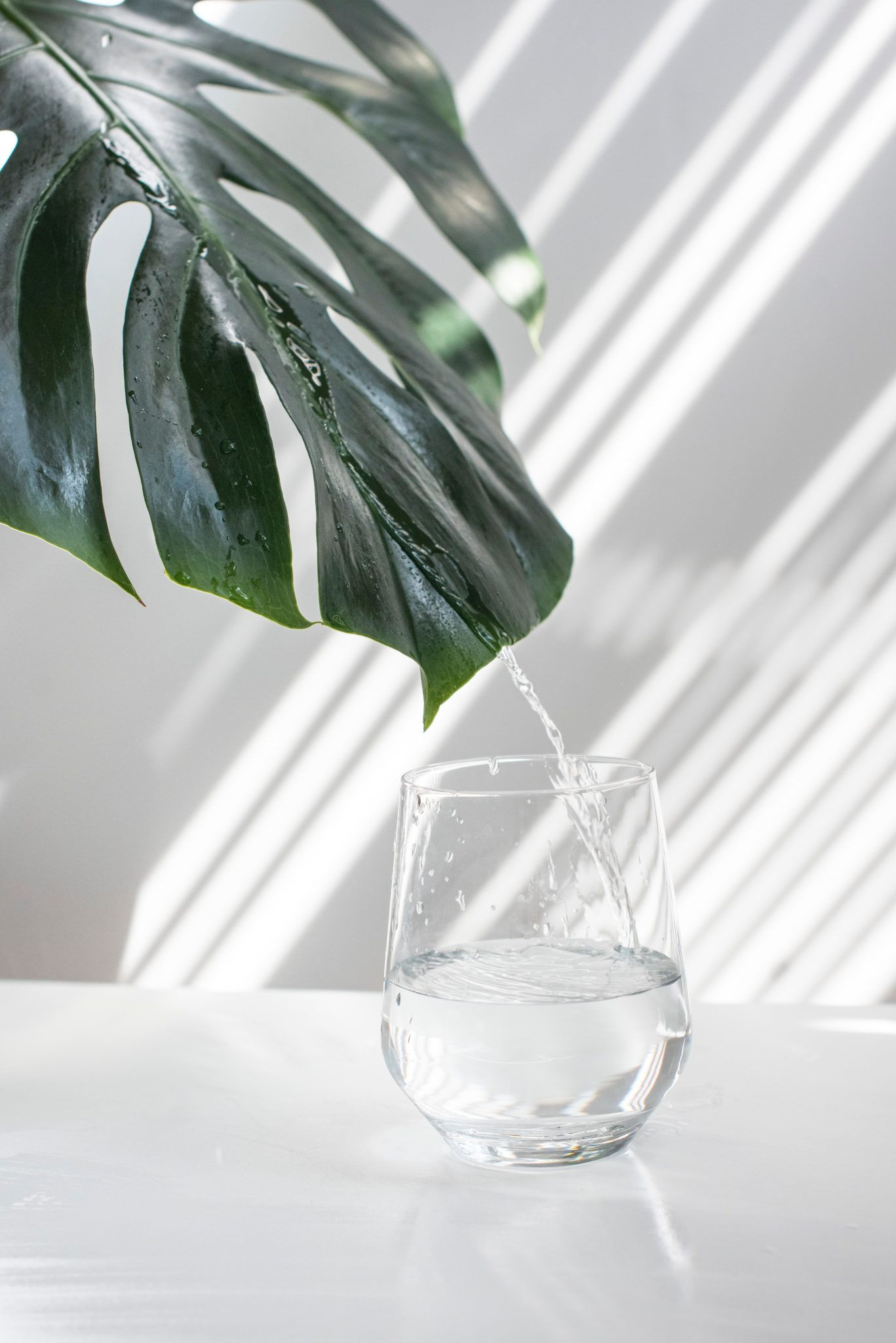full shot image of a clear glass of water sitting on a white table against a white wall with a green leaf in the top left corner of the background