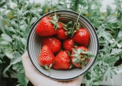 strawberries in a bowl to balance blood sugar levels