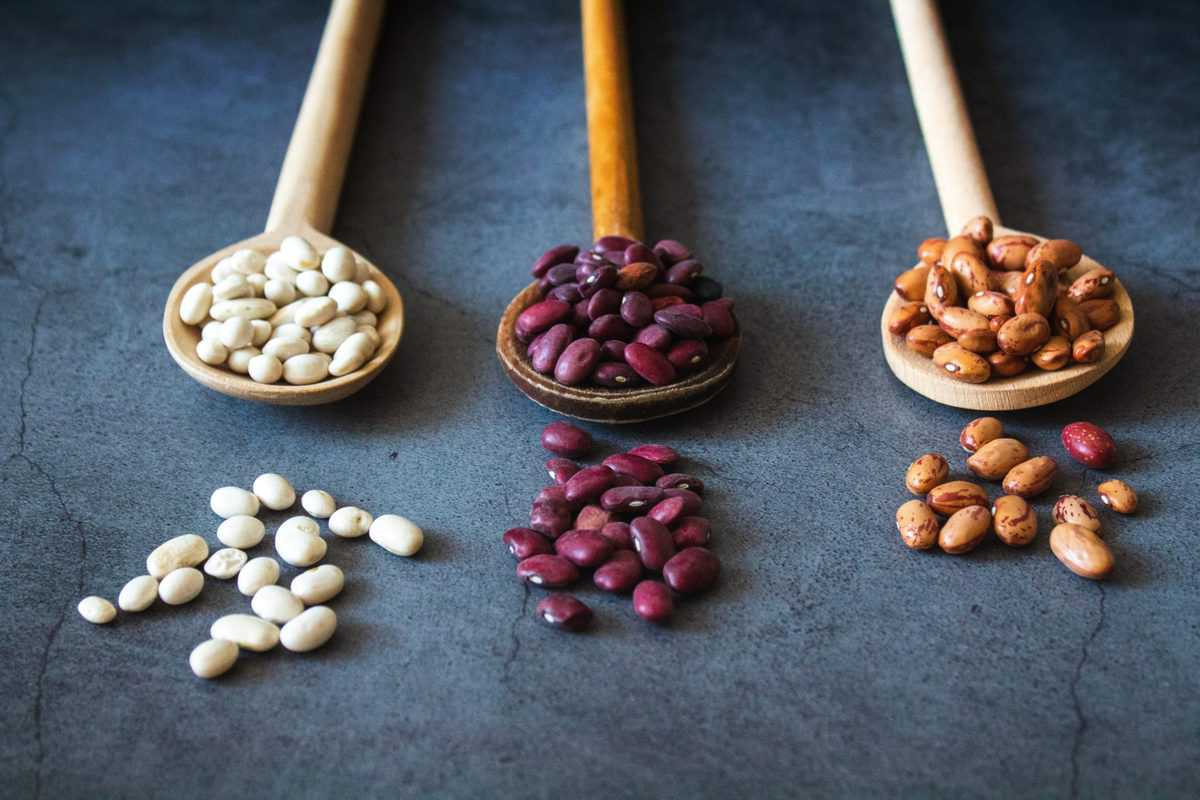 image of dried beans on wooden spoons