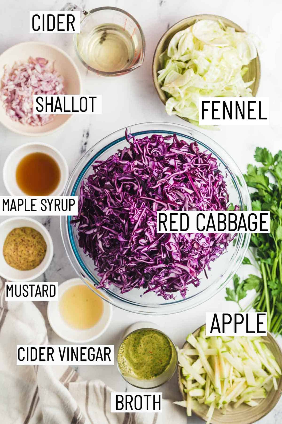Flat lay image of recipe ingredients for recipe including fennel, cider, shallot, maple syrup, mustard, cider vinegar, broth, apple, and red cabbage.