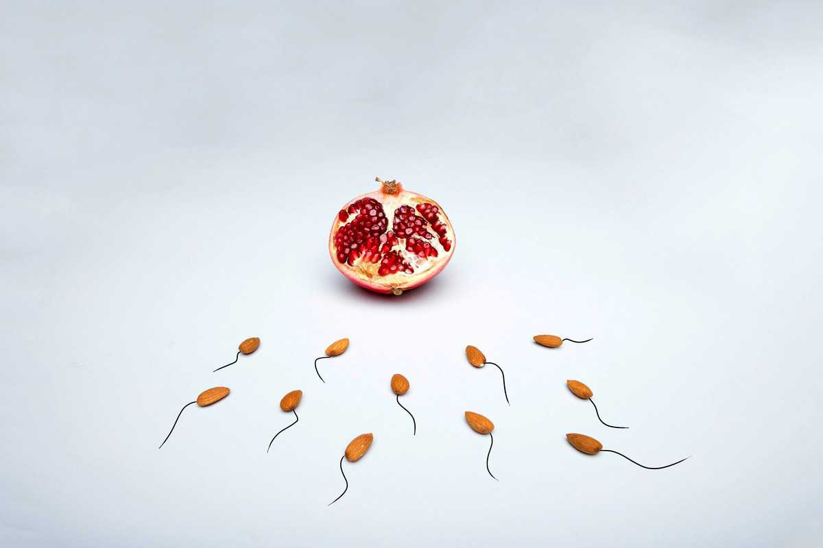 Image of almonds, representing sperm, travelling towards a pomegranate, representing the egg.
