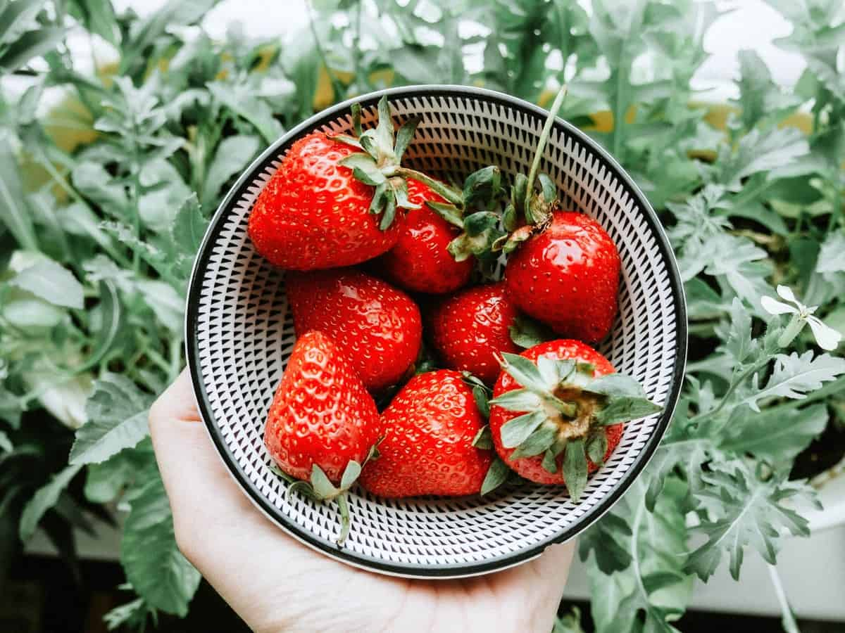 A hand holding a bowl of strawberries which have antioxidants beneficial for the hormonal acne diet.