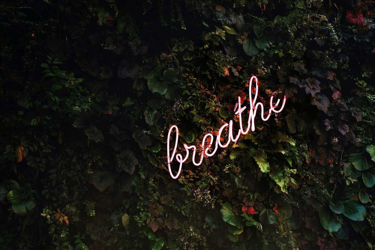 "A neon sign that says ""breath"" when dealing with quarantine weight gain."