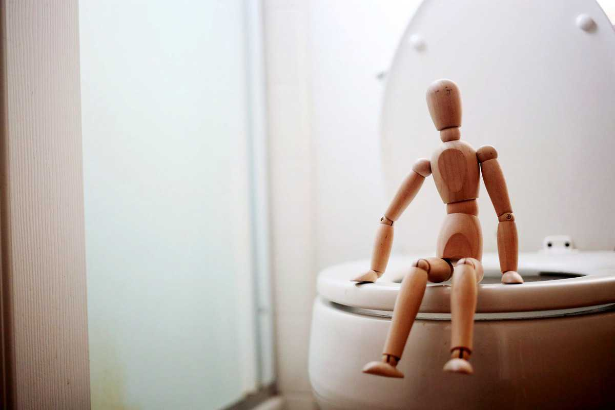 A wooden dummy sitting on a toilet.