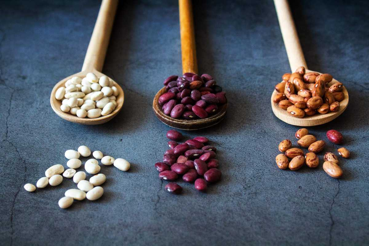 Several dry legumes on three wooden spoons.