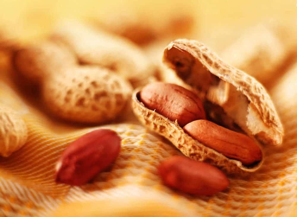 peanut_2_of_7.jpg