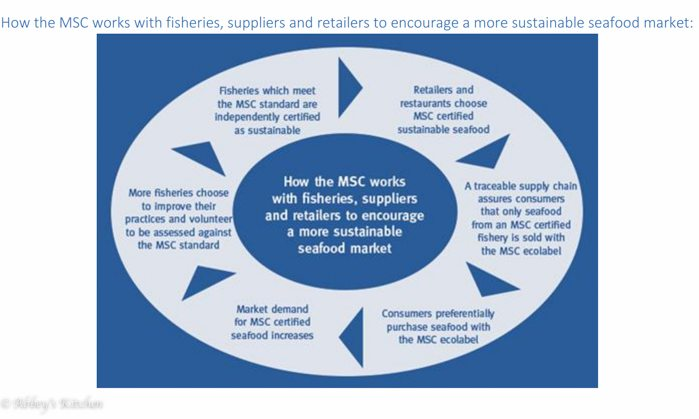 wwf_sustainable_seafood.jpg
